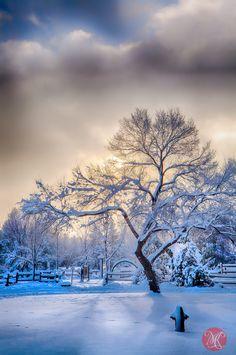 Winters Here - Edmonton, Alberta, Canada