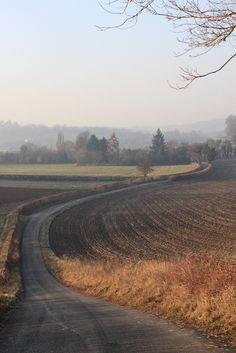 old-arcadia:  On the road in the Radnage valley running west from West Wycombe. (by Eric Hardy)