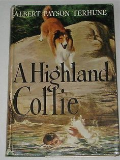 VINTAGE COLLIE STORY  A HIGHLAND COLLIE