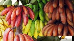 A banana is an edible fruit – botanically a berry – produced by several kinds of large herbaceous flowering plants in the genus Musa Planting Flowers, Harvest, Berries, Banana, Fruit, Plants, Food, Eten, Bury