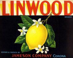 antique 1930 fruit crate label lemon lithograph linwood
