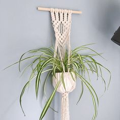 Handmade macramé wall hanging made with natural cotton featuring a diamond design and basket for a planter.  Suitable for a range of pot sizes, due to the nature of macramé. Best suited for up to 15cm diameter pots.  Width: 30cm Height: 80cm  If you have any questions about the piece please message me.