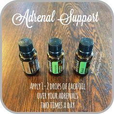 Adrenal Support with doTERRA Follow me on Instagram: https://www.instagram.com/fromashstooilsbyashley/ Order your oils at: http://mydoterra.com/teamwhitesell