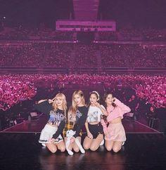 Blackpink x Blinks Kpop Girl Groups, Korean Girl Groups, Kpop Girls, Yg Entertainment, K Pop, Divas, Kpop Girl Bands, Lisa Blackpink Wallpaper, Black Pink Kpop