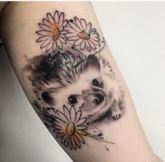 Rene Botha hedgehog tattoo