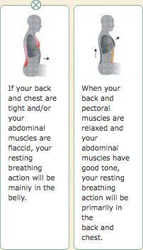 Gokhale Method - alignment and posture
