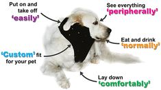No Flap Ear Wrap Protective Ear Wrap For Dogs To Protect