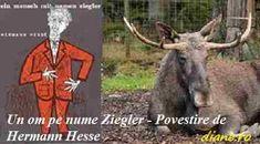 Un om pe nume Ziegler - Povestire de Hermann Hesse Hermann Hesse, Mai, Goats, Animals, Zoology, Animales, Animaux, Animal, Animais