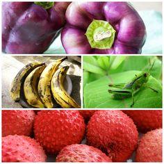 10 comidas saudáveis que nunca provou | SAPO Lifestyle