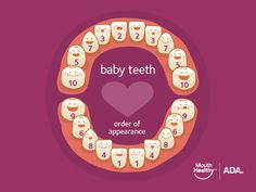 Learn healthy dental habits for babies and kids, when babies teeth, nutrition tips, oral health concerns as well as brush up on your dental IQ by taking our fun quiz. Teething Chart, Teething Signs, Baby Teething, Teething Toys, Dental Kids, Dental Care, Kids Dentist, Dental Teeth, Dental Hygienist