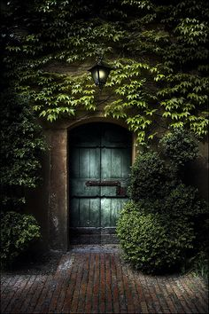 Sometimes the best doors are hidden in shadows - you have to walk through the dark to get to the opening.