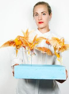 taxidermy artist Polly Morgan