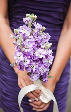 bouquets, purple, Spring