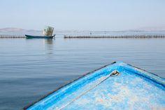 Bootje varen in de Mesolonghi lagune in Griekenland.