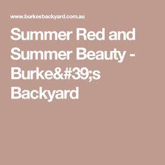 Summer Red and Summer Beauty - Burke's Backyard