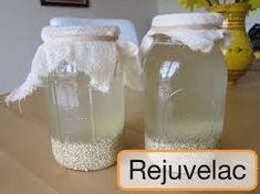 El rejuvelac es un fermento que proviene de la germinación de diversas semillas como alfalfa, trigo, cebada, quínoa entre otras. Por ser un fermento, es un alimento pre digerido, esto quiere decir que las proteínas ya están descompuestas en aminoácidos y los carbohidratos en azucares simples como dextrinas y sacarinas, nutrientes que son rápidamente asimilados por el cuerpo