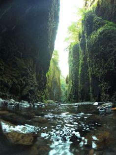 The stunningly beautiful Oneonta Gorge