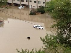 Cameron MacIntosh  cruiser abandoned in flooded Parking lot at club
