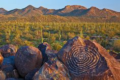 Guy Schmickle, Desert Petroglyphs: Here's another shot from my recent trip to the Sonoran Desert. These Hohokam Indian petroglyphs can be found in Arizona's Saguaro National Park atop of Signal Hill. It was a very windy evening and shooting anything involving vegetation was out of the question. I figured these boulders would sit still though!! To read more about my spring trip to the desert, check out my blog.