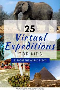 25 Virtual Expeditions for Kids: Explore The World Today Educational Activities, Learning Activities, Activities For Kids, Educational Websites, Educational Technology, Croquis Architecture, Virtual Travel, Virtual Field Trips, Kids Education