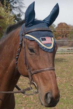 Patriotic Horse Wear   Velvet Rider