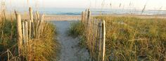 Wilmington And Beaches   Cape Fear Coast   Pleasure Island   Wilmington & Island Beaches