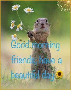 Good Morning Animals, Good Morning Snoopy, Good Morning Saturday, Good Morning Friends, Good Morning Good Night, Morning Humor, Good Morning Wishes, Morning Wishes Quotes, Birthday Wishes Quotes