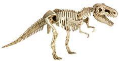 Dětské dinosauří vykopávky Spiegelburg – T-Rex - Skibi Kids T Rex, Tyrannosaurus, Die Spiegelburg, Lion Sculpture, Statue, Animals, Kids, Art, Brushes