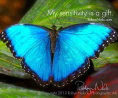 My sensitivity is a gift. #butterfly #affirmations ♥ Art by RobynNola.com