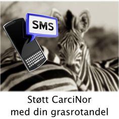 Grasrot til CarciNor.  Støtt CarciNor lokallag Vest med din grasrotandel.  Bli med og bestem hvem som skal få noe av Norsk Tippings overskudd. Velg CarciNor som din grasrotmottaker, som får 5 prosent av din spillinnsats - uten at det går utover innsats, premie eller vinnersjanse. Send SMS; Grasrotandelen 995951428 til 2020 http://www.carcinor.no/index.php/lokalt/vestlandet