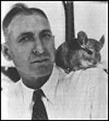 Those of us who own and love pet chinchillas have Mr. M. F. Chapman to thank for our enjoyment of these gentle animals. Nearly every pet chinchilla alive today is a descendent of Mr. Chapman's original herd. This is the story of the man who domesticated the chinchilla---