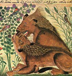 Persian miniature, from Manafi al-Haywanat by Bukhtishu, dates to the 12th century