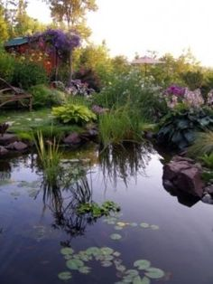 Backyard Landscaping Ideas http://vur.me/s/landscaping-ideas