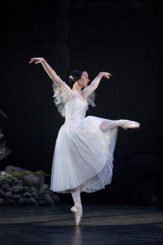 Birmingham Royal Ballet - Photo by Bill Cooper