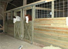 For riders on a budget, these DIY stall fronts using economically priced feedlot panels and track door hardware, which can be purchased at most farm supply stores, are definitely an option! - awesomeanimalz.com
