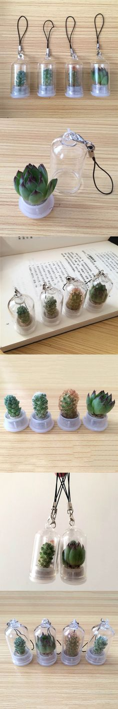 Lucky Drifting Bottle Succulent Plants Micro-landscape Car Pendant Car Mirror Hanging Ornament Home Car Decoration Randomly