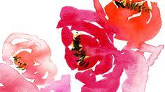 Flowers Desk top wall paper