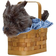 Purse Doggie Basket