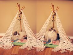 tepee for kitty!