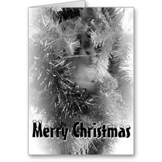 Cat in the tree Christmas Greeting Card #greetingcard #greetingcards #card #cards #greetingcardtemplate #cardtemplate #personalizedgreetingcard #personalizedgreetingcards #merrychristmas #merrychristmasgreetingcard #catchristmascard #catchristmasgreetingcard #catinthechristmastreecard