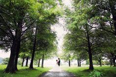 雨の前撮りのたのしみ*滋賀 |*elle pupa blog*