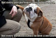 Oh so true!!! Dogs know Dog lovers!!!!