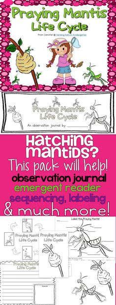 Praying Mantis Life Cycle Pack - great for raising mantids in the classroom! Contains student observation journal, sequencing sheets, labeling pages, emergent reader & much more! Kindergarten, 1st grade appropriate!