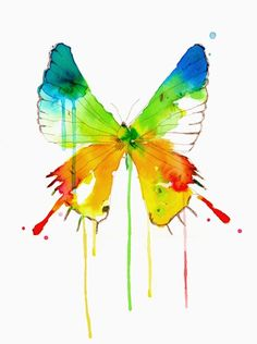 Water Color Illustration by Conrad Roset. -- Love the colorful watercolor butterfly. Butterfly Watercolor, Butterfly Art, Watercolor Animals, Watercolor Paintings, Butterflies, Watercolours, Butterfly Colors, Rainbow Butterfly, Butterfly Painting