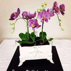 Orchid pot for a birthday cake... I will be happy with that!... Cakes by handi's cakes