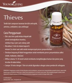 #katalogEO Everyday oils kit: THIEVES Super-super best seller Young Living Company of Angels Indonesia