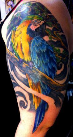 Tattoos Design Parrot Photos Design Parrot Photos via WordPress Tribal Tattoos, Cool Tattoos, Bird Tattoos, Awesome Tattoos, Tatoos, Bird Shoulder Tattoos, Blue Gold Macaw, Parrot Tattoo, Wordpress