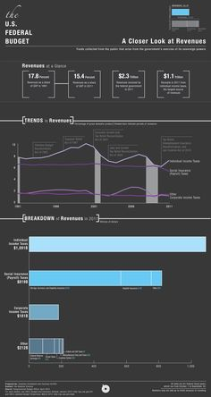 government infographics - Google Search