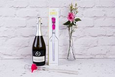 A Prosecco and bottle chiller. Prosecco and this unique kitchen gadget that will keep any bottle of white wine or bubbles chilled – perfect dinner party or summer party gift. Chill, Prosecco, Inspirational Gifts, Kitchen Gadgets, Party Gifts, White Wine, Champagne, Bubbles, Dinner