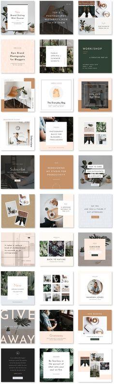 Social Media Bundle - Station Seven WordPress Themes